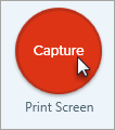 Video capture record button