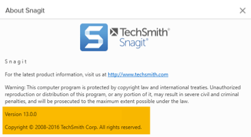 Snagit windows version page