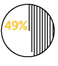 49 percent icon.