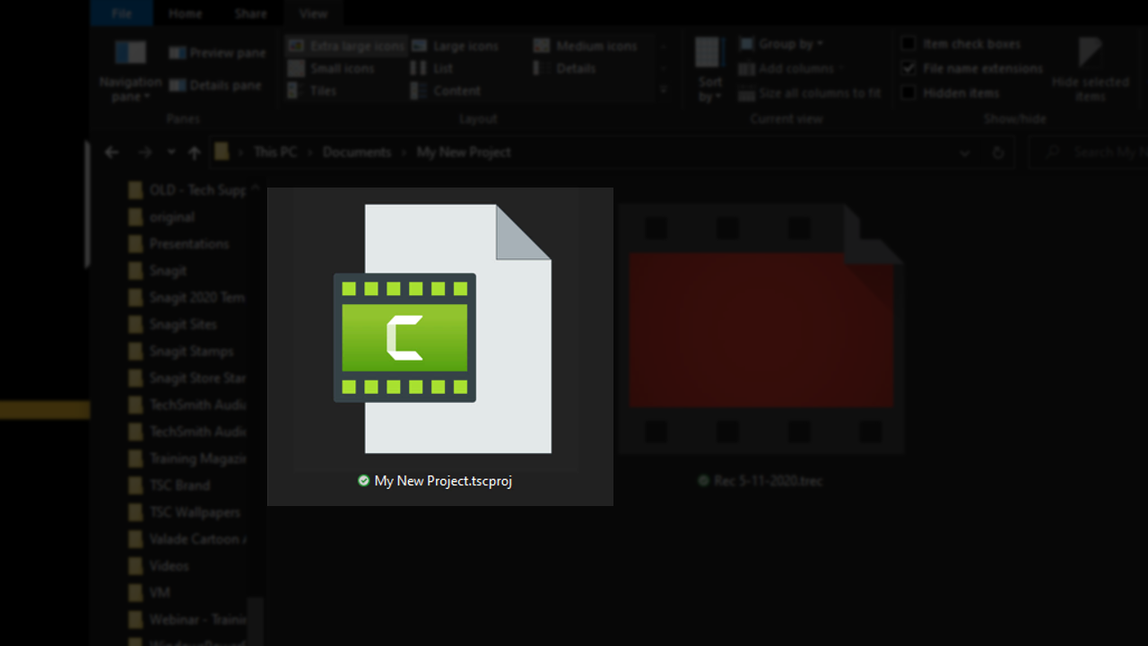 Camtasia project file