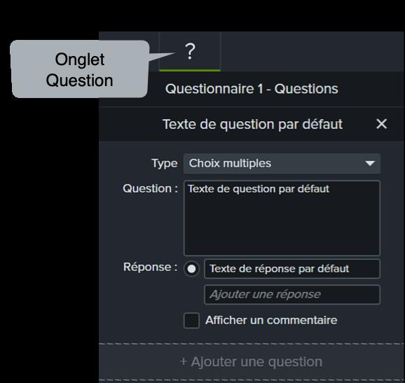Camtasia Edit Question in Properties Panel