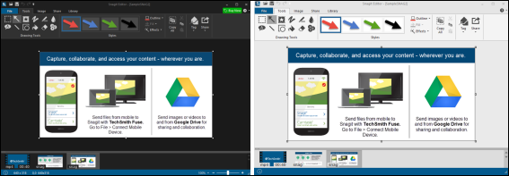 dark and light versions of the Snagit UI