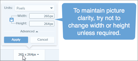 "Snagit's image size controls with a callout stating ""To maintain picture clarity try not to change width or height unless required."""