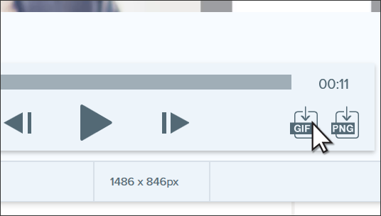 Clicking on the GIF button to generate a GIF.