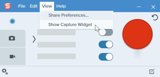 Click View menu and select Show Capture Widget.