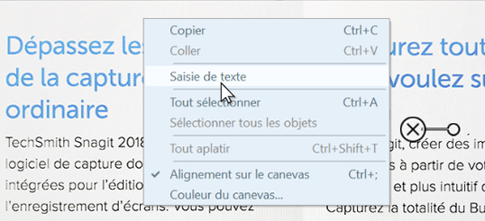 Right-click menu on Snagit image capture