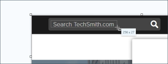 Snagit user interface showing auto fill