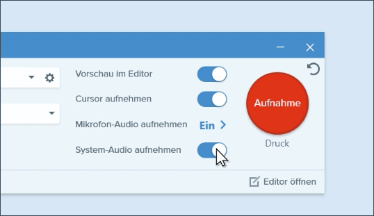 Click Record System Audio toggle option.
