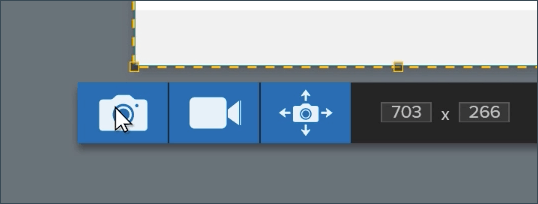 Snagit capture toolbar with a cursor hovering over the capture an image button.