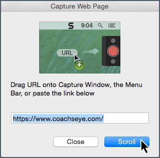 Capture webpage dialogue window