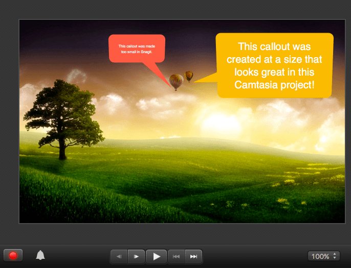 Snagit image open in Camtasia with callouts drawn on