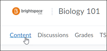 Brightspace course menu with Content highlighted
