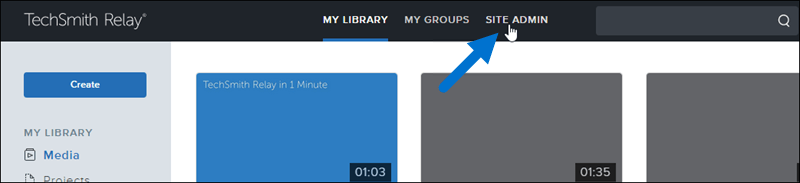 Clicking site admin tab